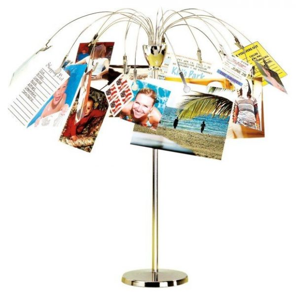 desktop tree photo holder white background