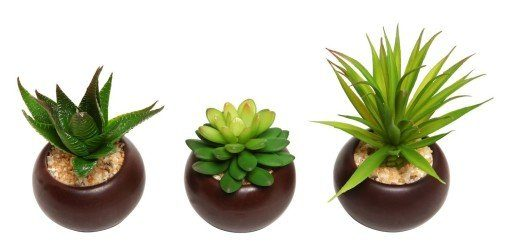 aritificial mini succulents in attractive brown pot