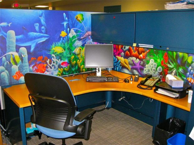 cubicle beautifully decorated with colorful aquarium scene wallpaper