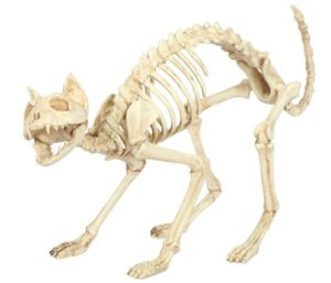 cat poseable skeleton cubicle decor