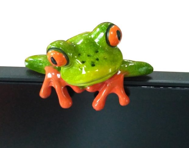 frog computer monitor decoration