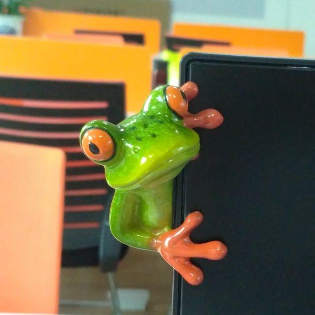 frog monitor decoration on side